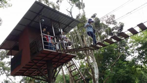 每个人来到树上屋,反应都是:新鲜、好奇,走吊桥也是树上屋一个好玩的地方。