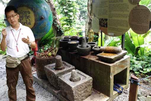 导游朱国樑坦言,历史上有多场战争都是为了香料,园内的香料地球仪,也讲述早期的香料战争经过。