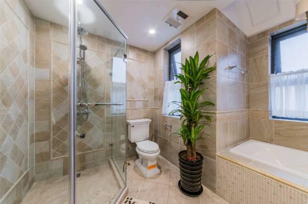 在厕所摆大叶植物,每天浇水及晒太阳,有助于吸走病气。