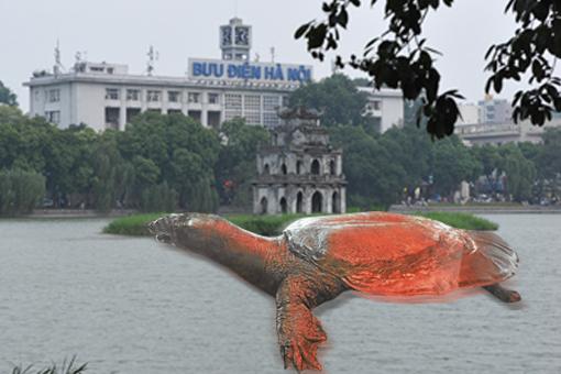 河内是个繁忙的市区,可是这里却是千年神龟的藏身之处,许多游客为了一睹神龟风采,更是全副装备守候在还剑湖边。