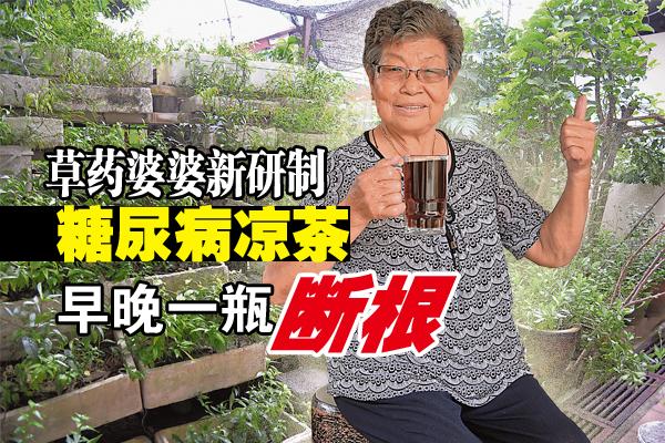 宅心仁厚的草药婆婆,独自研制出治疗糖尿病的草药凉茶,不但医好母亲的糖尿病,亦使一名病人的糖尿指数恢复正常。