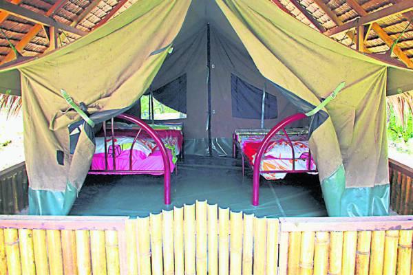 游客除了体验睡露营帐蓬,亦可到果园尝试过农家生活,而榴梿和豆蔻则是此果园之宝。