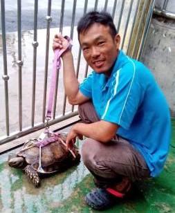 """小龟""""宝宝""""在俞宅自由自在的活动,毫无约束。"""
