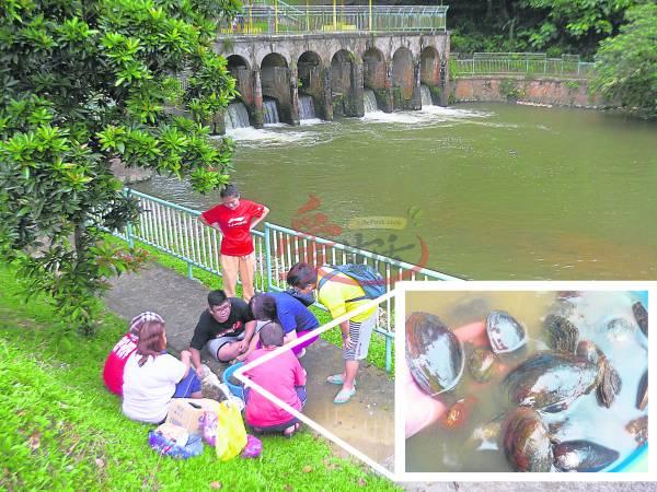 双文丹七仙井河蚌肥美,每逢假日,都有许多人到此抢捞河蚌。