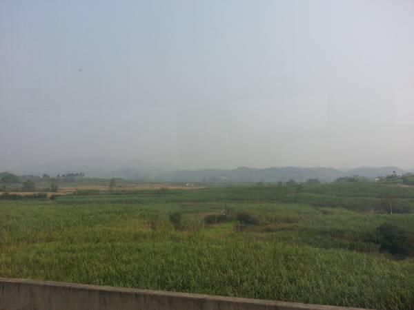 在长寿村里,可以随处看见甘蔗林与碧绿的河流,难道这就是长寿的秘诀?