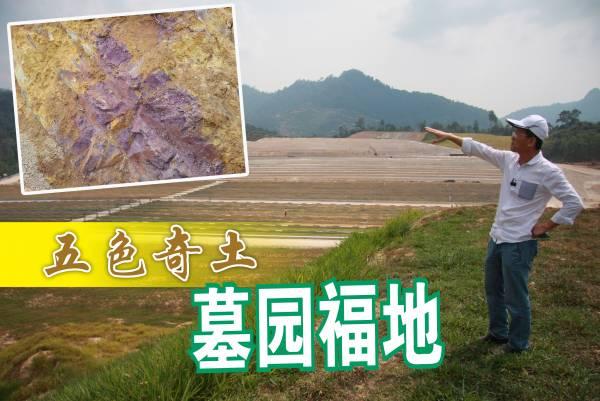 """陈董表示,这片土地不但有五色奇土,还有罕见的紫色""""护龙土""""(小图),因此他每次来到这里,总觉得精神饱满。"""