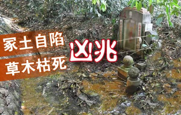 吴佰霖道长表示,若发现祖坟冢土自陷、草木枯死,即表示已犯了大凶之兆,宜尽早请阴宅风水师傅勘察。