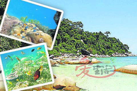 抵达Pulau Besar后,爱浮潜的旅客可观看奇异珊湖与的彩缤纷的热带鱼。