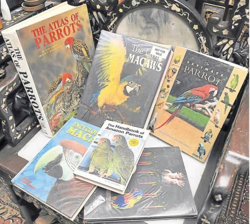 为了对鹦鹉有更深入的了解,他还买了很多有关鹦鹉的书籍。