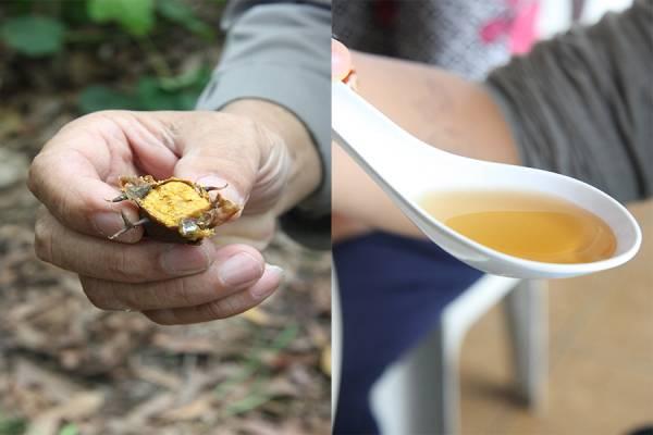 """近乎""""天生天养""""的养蜂法,促使生产出来的蜂胶蜜,100%天然纯正,充满野性风味。"""