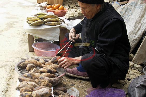 除了玉米粥、蔬菜,蕃薯和红薯亦是巴马长寿村人主要的粮食。