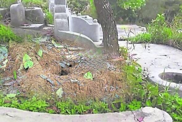 """如果祖坟有蚁窝,先人每天被蚂蚁""""吃肉啃骨"""",除了先人受煎熬,长期也会影响后代的运势。"""