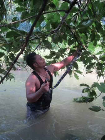 Amjad Khan为了寻蛇,舟车劳顿,攀山涉水,都在所不惜。