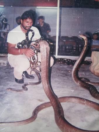 """曾经与数千只蝎子和数百条蛇共同生活,并打破多项纪录的大马""""蛇王""""Ali Khan,在被一条眼镜蛇王咬伤后医治无效死亡。"""