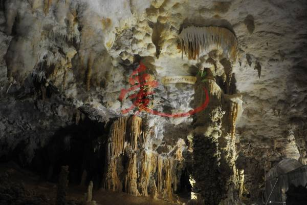 """巴马水晶宫里的钟乳石经过长时间的被侵蚀后,""""雕刻""""出不同的形态,自然景观列为中国四A级旅游胜地。"""