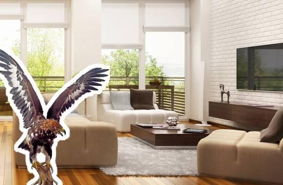 一间简单的居家可以让人住的舒服,若摆放多余的摆设品从而影响屋主运势,而单身女性在家摆放凶猛动物的标本,可是会影响桃花运哦!