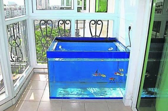 鱼缸属于动水,千万别放置在五黄位,否则会危害屋主。