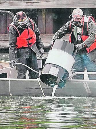 美国工兵在伊利诺伊河投放毒药,但不仅没有杀死鲤鱼,反令当地鱼类大量死亡。