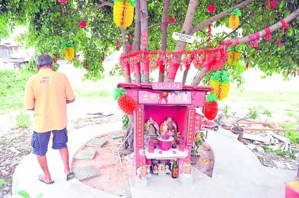 七棵许愿树旁供奉着土地公与土地婆,附近做生意的小贩都会来拜拜祈求庇佑。