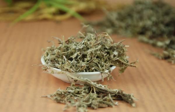 北子草除了具有清热、生津止渴的功效之外,它还能解毒,当你喝下后,若夜里出现腹痛,甚至是肛门出现刺痛感,这就表示你体内囤积太多毒素了。
