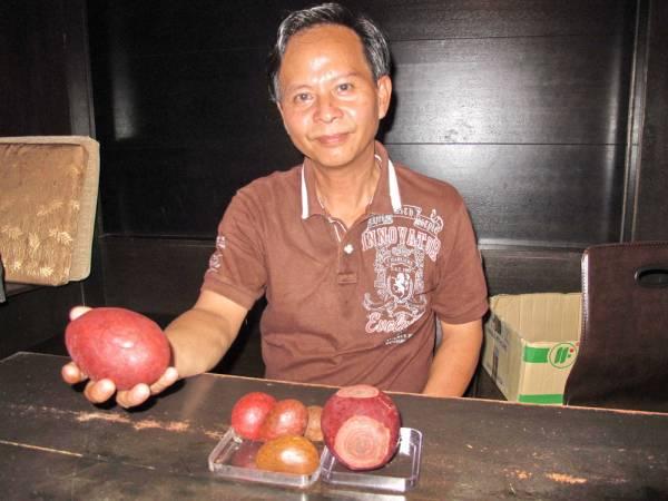 张志健表示为了确保顾客购买到纯正的箭猪枣,他本人都亲赴印尼寻枣。