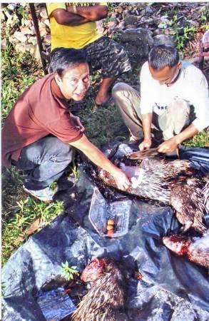 张志健亲自监督工人从当场劏杀取枣