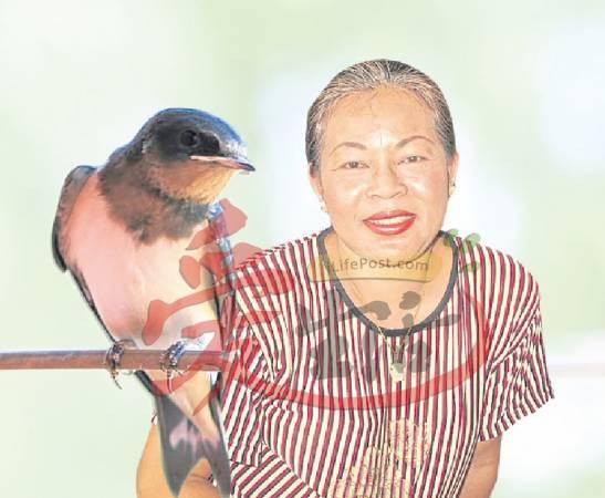 被燕子站在肩膀上的阿Lan高兴的表示,她的好运要来临了。