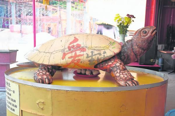 摸灵龟——赐财