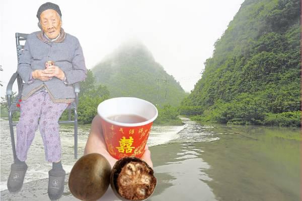 """在中国有一个地方,全村无一人罹患癌症,而且百岁人瑞比比皆是。本报记者前往中国探索长寿秘诀,发现当地的泉水,还有一种""""神果"""",就是他们延寿的秘方。"""