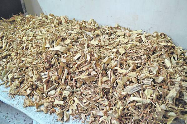米碎花切片后晒干即可酿成补酒,对溃疡更具疗效。