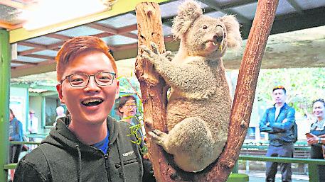 参观Featherdale野生动物园与澳洲国宝无尾熊合照。