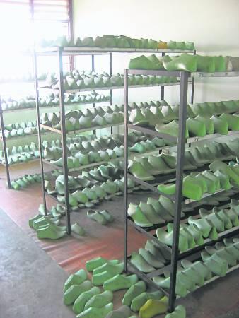 鞋楦样本都整齐地放在样本室。