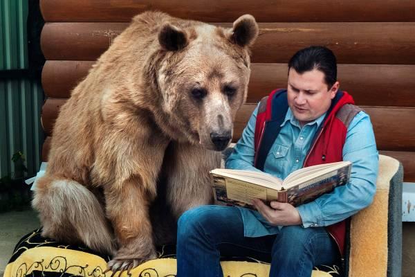 主人在阅读,斯特潘也会乖乖待在一旁陪伴。
