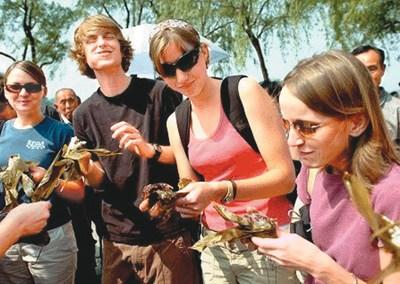 外国人也有吃粽子的习俗哦!