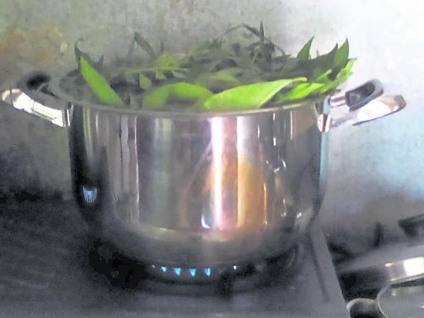 煲好的草药午时水,具有多重健康功效,除了强身健体,还能去除皮肤病。