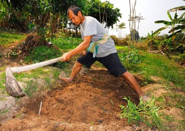 人生赢家:从半亩农地开始,京泰哥如今是世界名人。