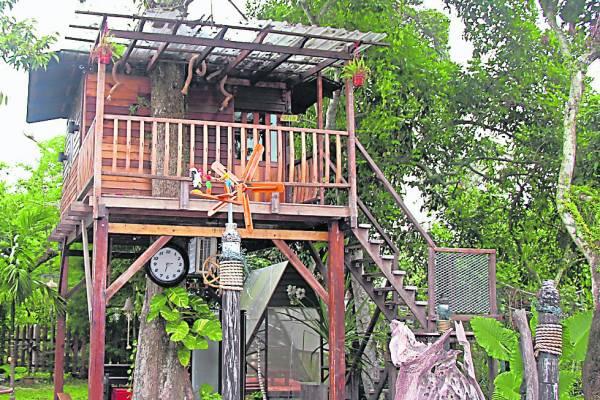 依树傍建,在园中靠着老榴梿数建立了风味十足的树屋。