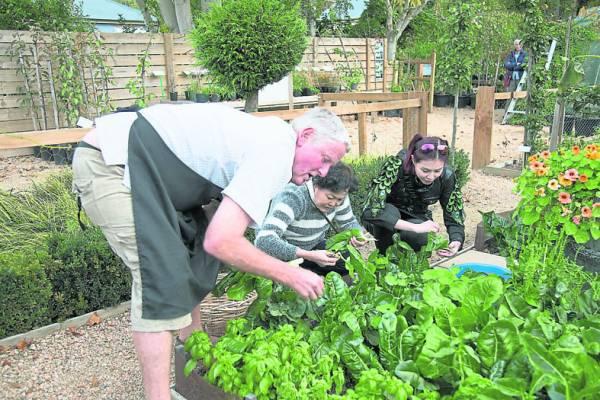 热情的园庄主人带着她们亲自采摘新鲜蔬果,制作简单的健康沙拉。