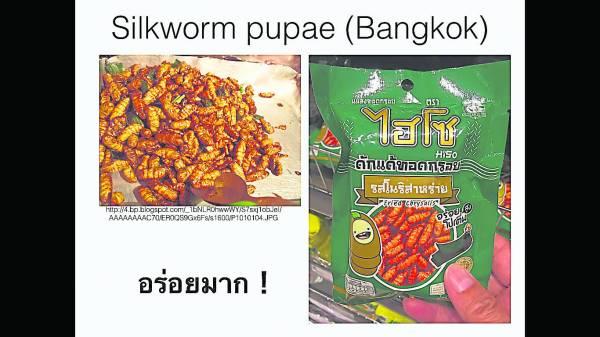 泰国出产的昆虫零食,你吃过吗?