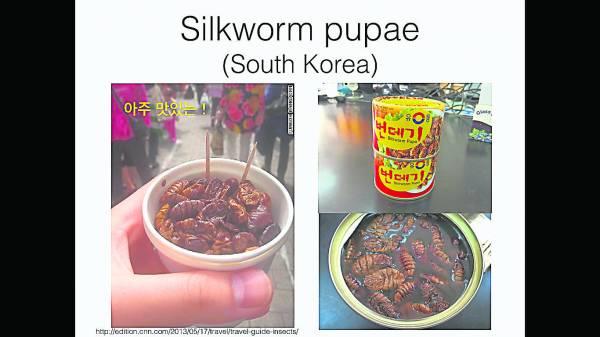 韩国出产罐装的速食昆虫小食,打开即可食用。