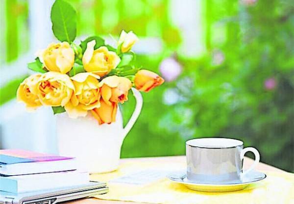 黄色植物可帮助考试运,考试题目难不倒你。