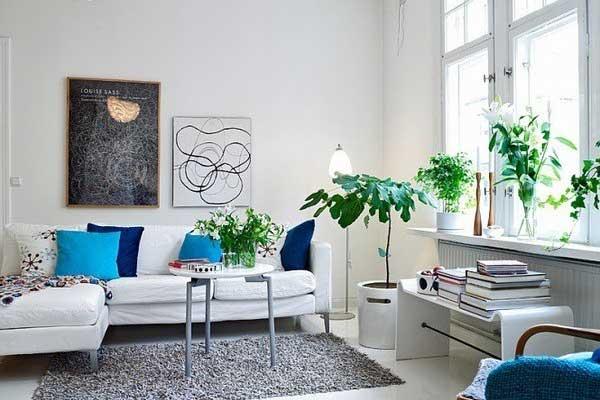 客厅不宜放过多的盆栽,会造成不良磁场干扰居住者健康。