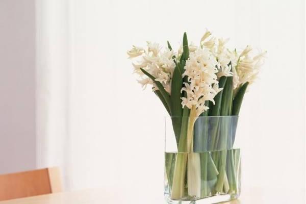 摆放白色鲜花,可让孩子专注在课业上。