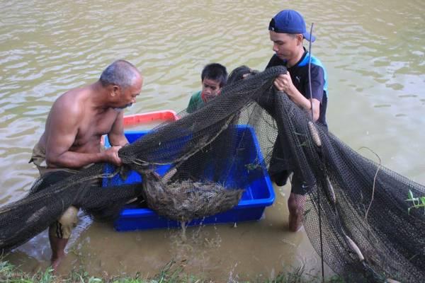 工作人员撒网下水把鱼打,在城市难得一见呢!