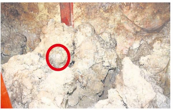 庙内的石头上长出了水晶,你看到吗?(红圈)