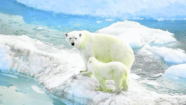 曾经有个小孩为了追北极熊而进入了巴罗莫角,从此就没有再出现过。