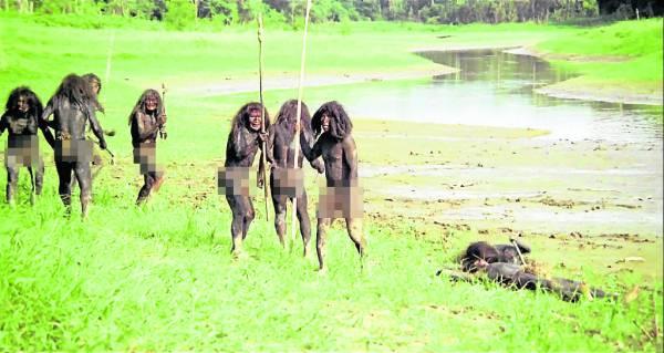 亚马逊森林里至少居住着5、6个食人族,在没有食物的情况下,即使是总统来临,他们也照吃无误。