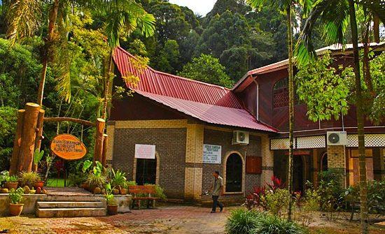 隐身在森林里的博物馆,随时为大家介绍瓜拉窝森林保护区的生态。