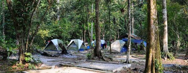 在瓜拉窝森林公园内有提供住宿服务,若旅客比较喜欢亲近大自然还可到露营区搭帐篷住一晚。