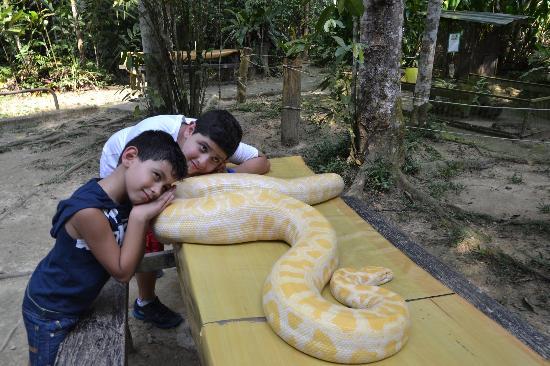是否有此胆量,与蟒蛇来个亲密接触?